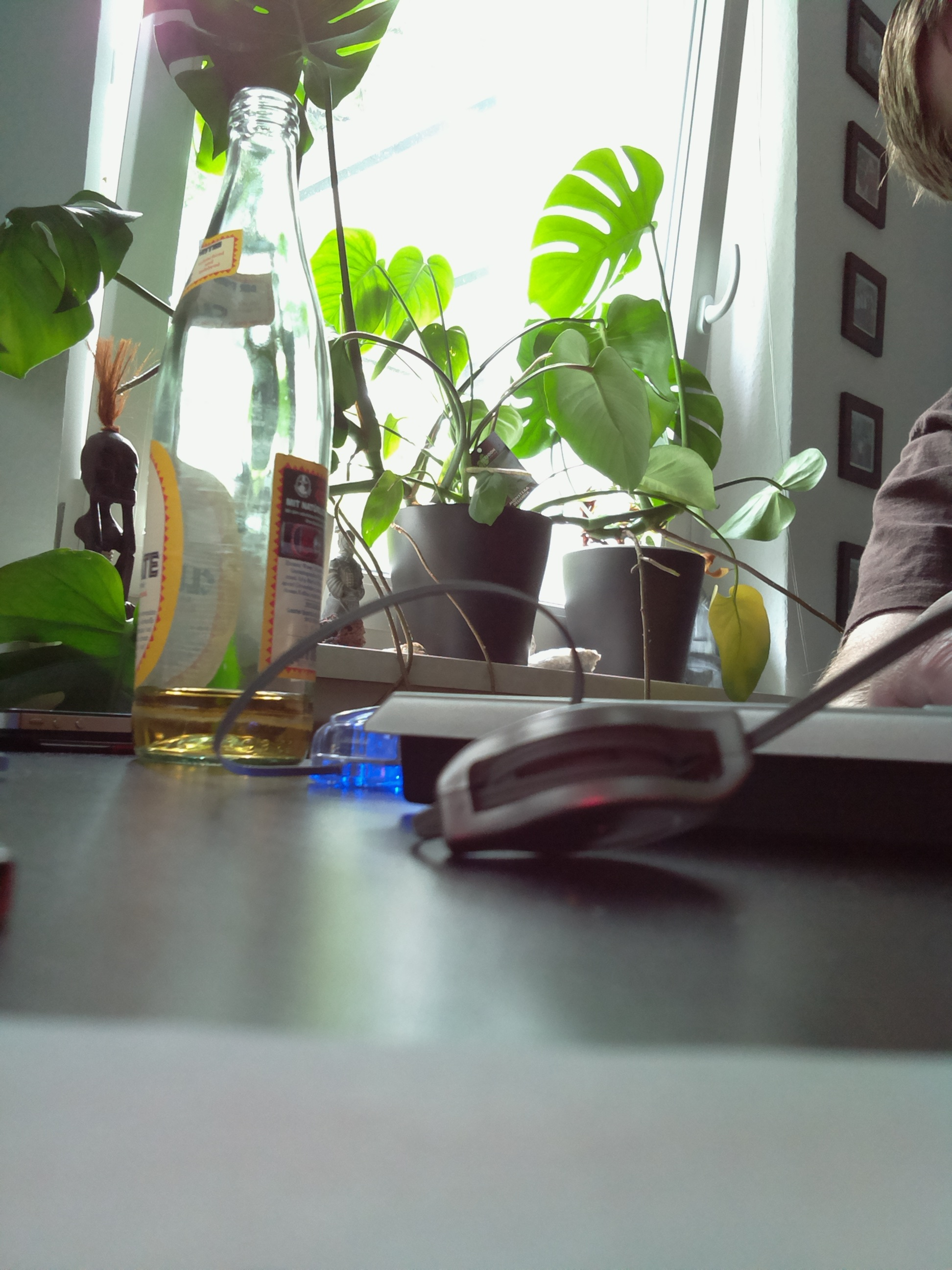 Raspberry Pi Camera Testbild 1